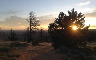 Fatbiking the Red Desert of Wyoming with my side-kick Studd Pyles (and the story of stud piles)